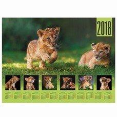 """Календарь А2 на 2018 г., HATBER, 45х60 см, горизонтальный, """"Львенок"""", Кл2 16841, K251126"""