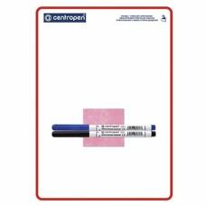 Доска маркерная CENTROPEN А4, 240х337 мм, двусторонняя, клетка-линия, 2 маркера + салфетка, 7769/01