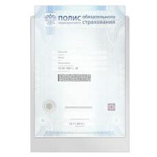 """Папка-файл для медицинского полиса, 223х158 мм, без отверстий, 0,12 мм, """"ДПС"""", 3127"""