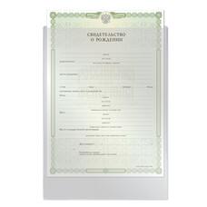 """Папка-файл для свидетельства о рождении, 190х263 мм, без отверстий, 0,12 мм, """"ДПС"""", 1746"""