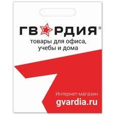 Пакет презентационно-упаковочный ГВАРДИЯ, 40х50 см, усиленная ручка