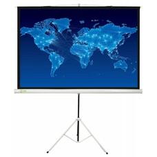 Экран CACTUS Triscreen CS-PST-150x150, 150х150 см, 1:1, напольный белый