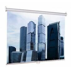 Экран LUMIEN Eco Picture LEP-100101, 150х150 см, 1:1, настенно-потолочный