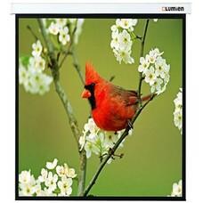 Экран LUMIEN Master Picture LMP-100129, 220х220 см, 1:1, настенно-потолочный